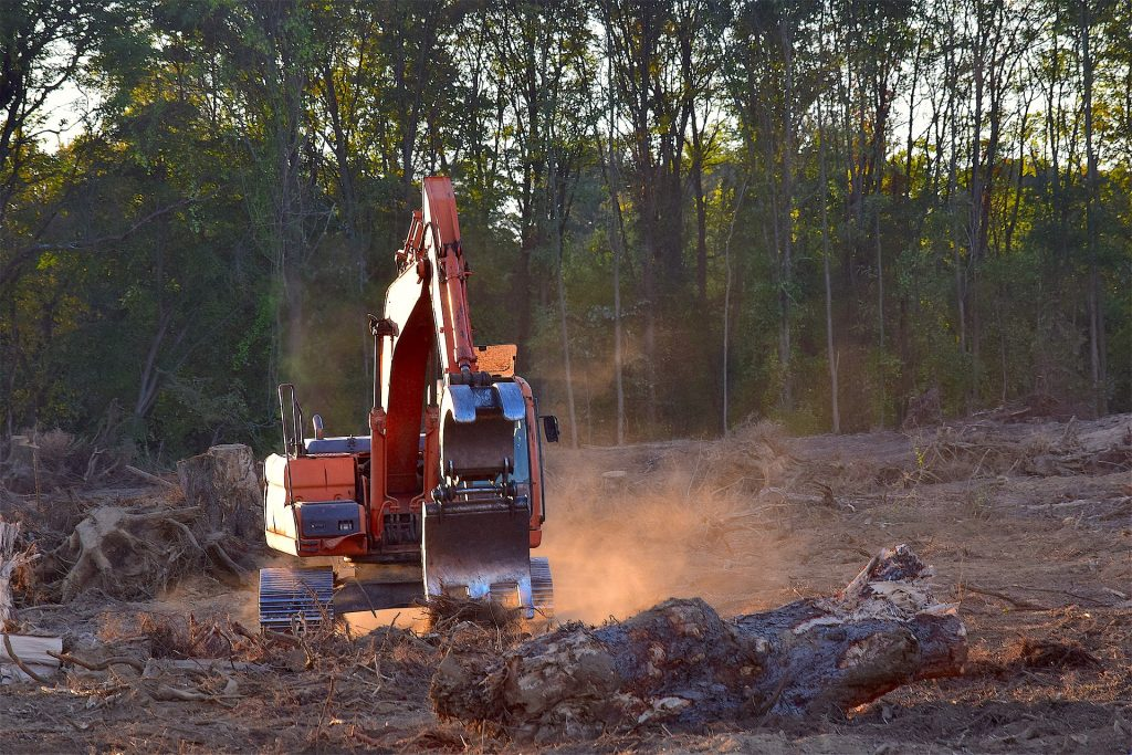 Bulldozer clearing forest