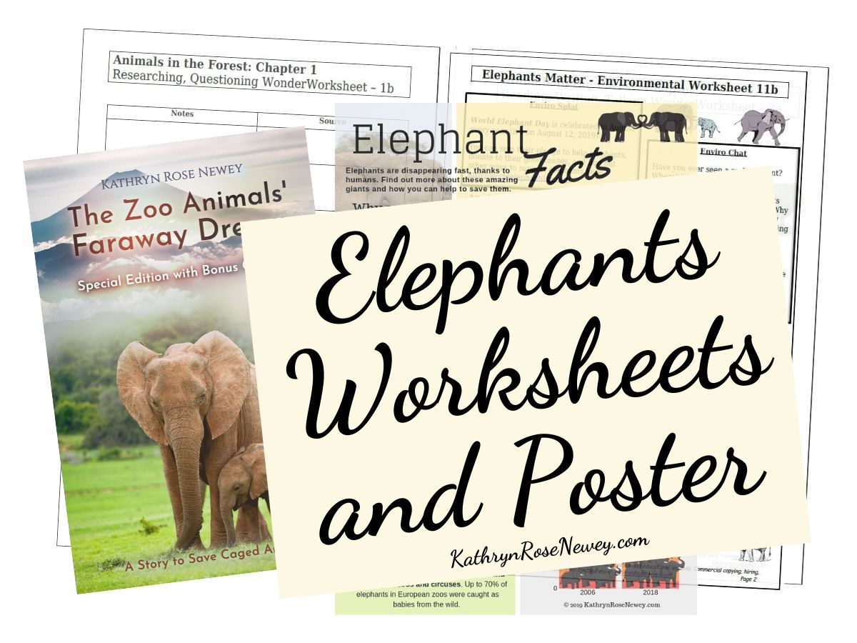 Elephants Matter Eco Worksheets And Poster Kathryn Rose Newey