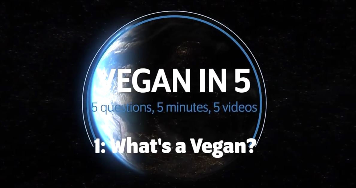 Vegan in 5: Video 1: What's a Vegan?