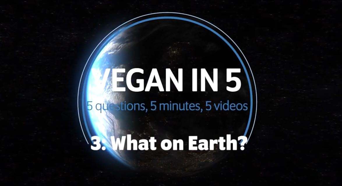 Vegan in 5: Video 3: What's Veganism got to do with the environment?