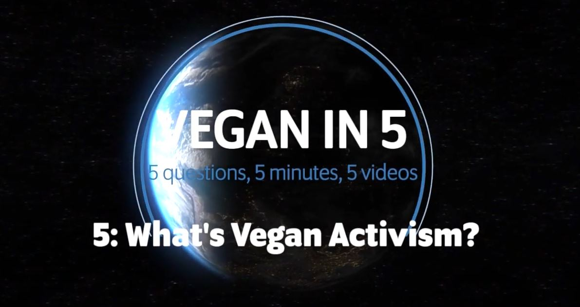 Vegan in 5: Video 5: What's Vegan Activism?